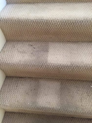 stairs carpet cleaning - before