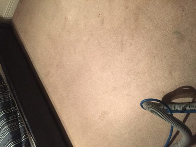 before carpet cleaning