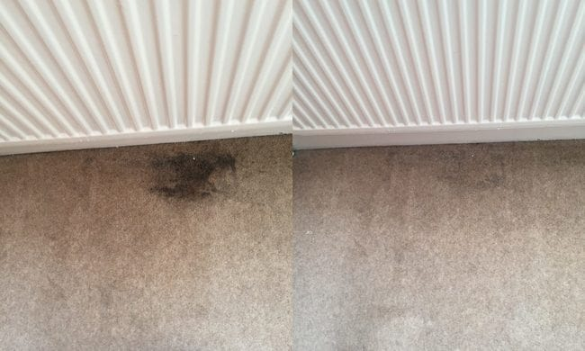 before and after carpet cleaning 6