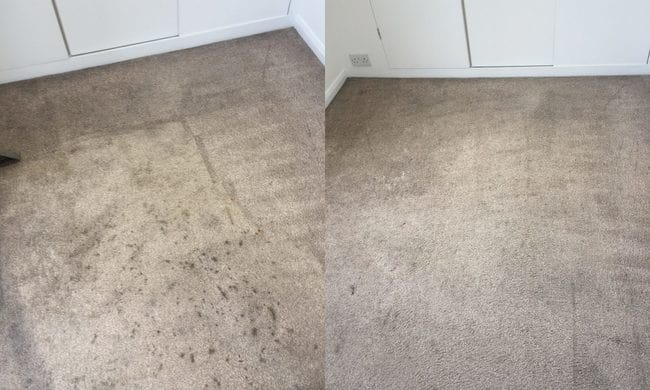 before and after carpet cleaning 5