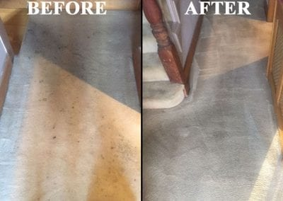 superior carpet cleaning richmond 2